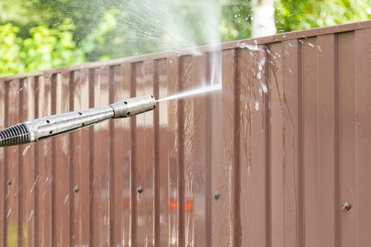 What You Need to Clean in Your Florida Backyard